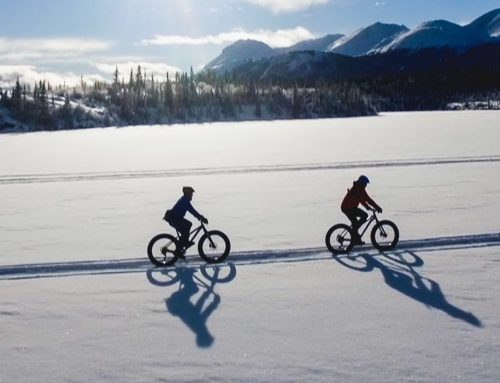 The Great Trails – Living Winter